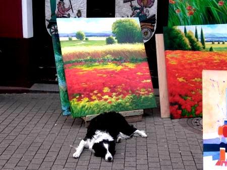 El perro del artista